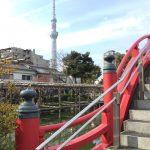 卯(東)の神様を内包する亀戸天神社の梅まつりへ日帰り吉方旅行