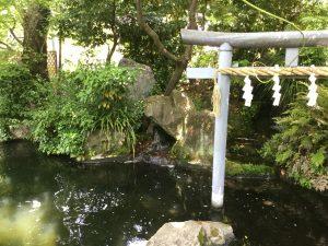 池と鳥居画像