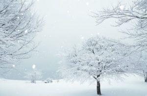 冬の風景写真